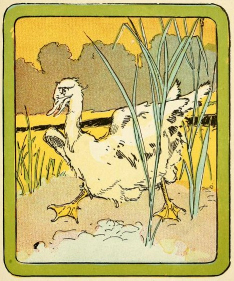 An illustration for the story The Ugly Duckling by the author Hans Christian Andersen