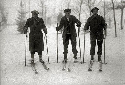 Winter Sport, Skiers in Northern Spain