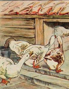 Pre-K Phonics: Goosey Goosey Gander