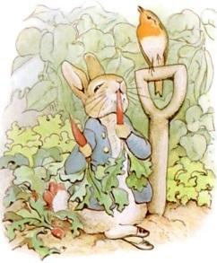 Pre-K Read-Aloud Stories: The Tale of Peter Rabbit